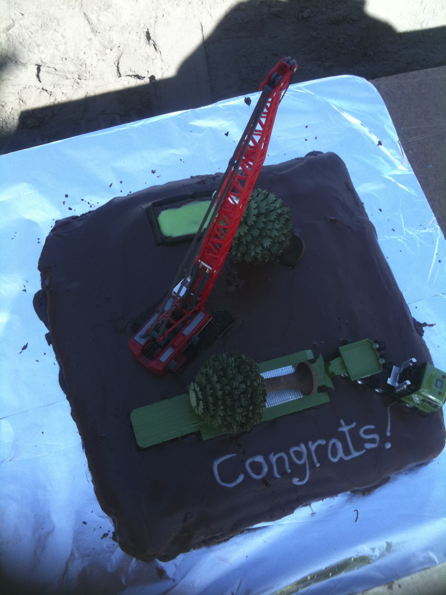 Tree lifting cake - JFK Mobile crane hire and rigging Melbourne